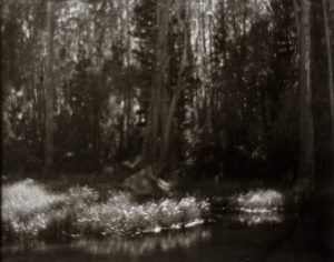 Morning, June Lake Loop. 8x10 Carbon Transfer Print.