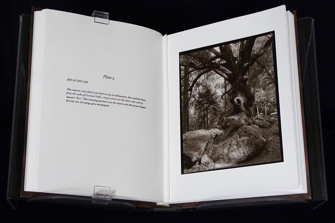 11-book-page-3-web_orig