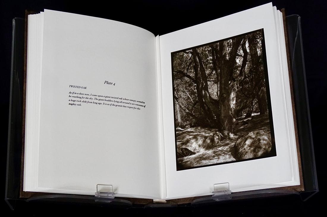 12-book-page-4-web_orig