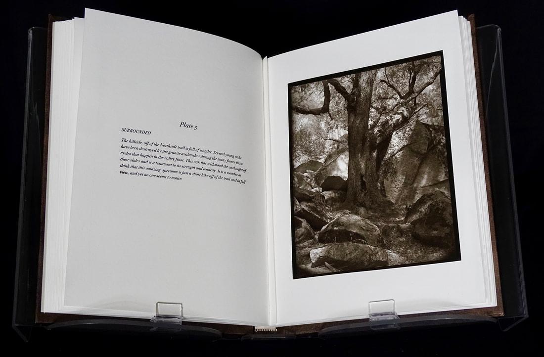 13-book-page-5-web_1_orig