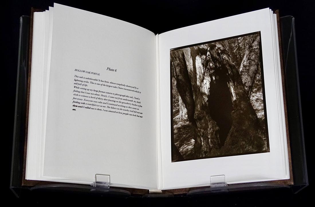 14-book-page-6-web_orig