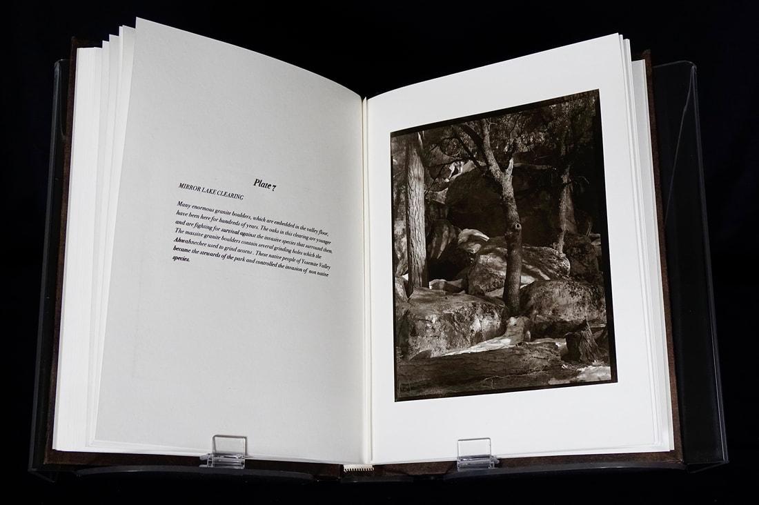 15-book-page-7-web_orig