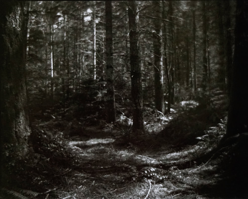 Trail of Imagination