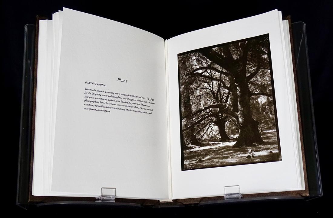 16-book-page-8-web_orig