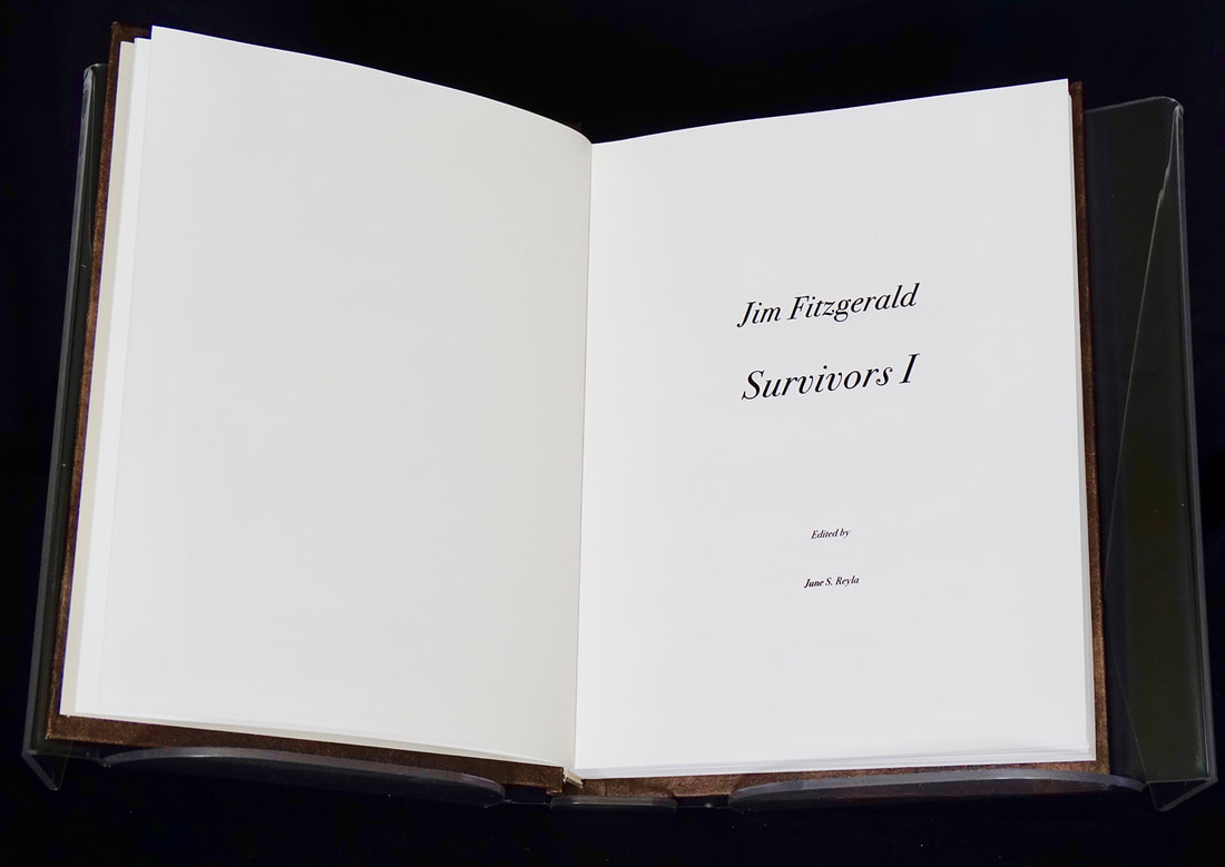 3-book-survivor-page-2-web_orig