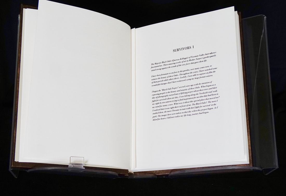 5-book-my-introduction-web_orig