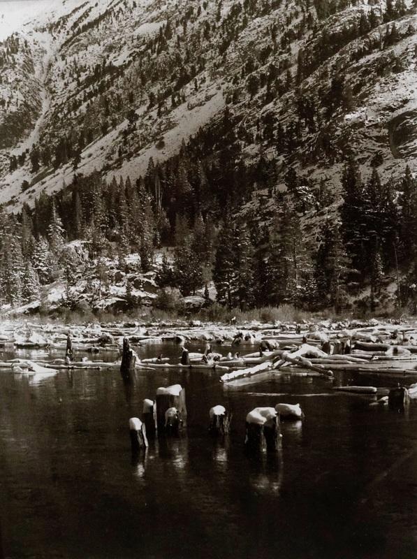 Lundy Lake Beaver Pond