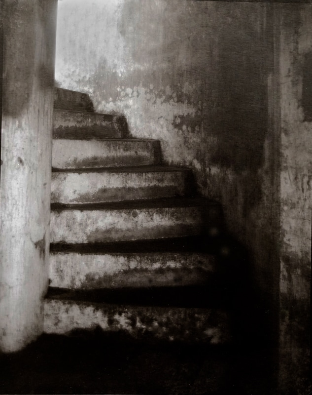 """""""Russell's Steps, 2017"""""""