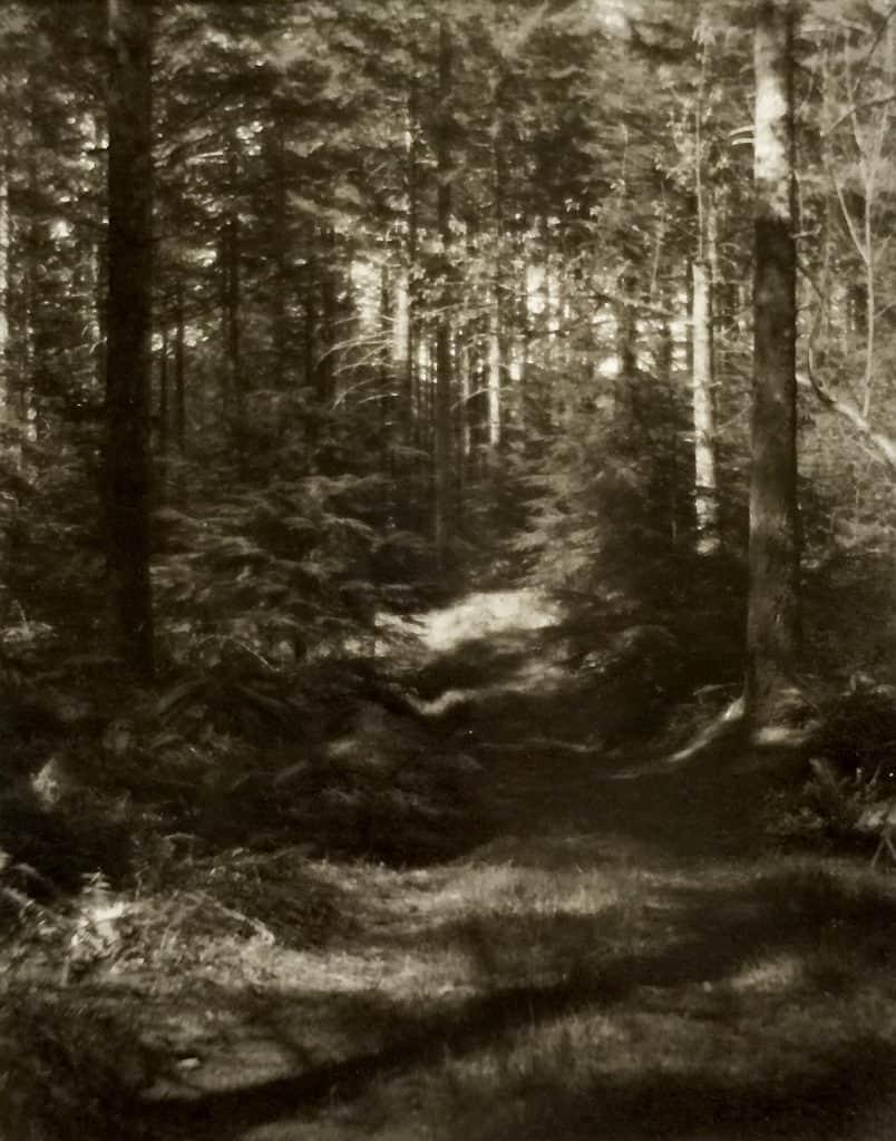 A Trail Home